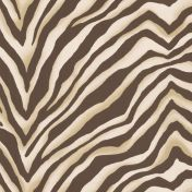 Cape Mountain Zebra - Java